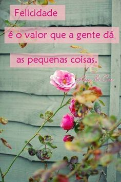 Felicidade é o valor que a gente dá as pequenas coisas!!