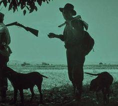 """Expo en el Museo de Salamanca: """"Cazando Imágenes con Miguel Delibes. Fotografías de Francisco Ontañón para El libro de la caza menor"""". Del 22.09.2015 al 01.11.2015"""