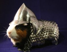 """Has your guinea pig ever wanted to go with you to a Renaissance Faire but had nothing to wear?"" This armor might also be useful in a carrot-jousting match.  -  eBay"