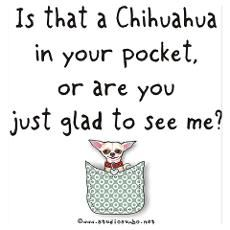 chihuahua quotes and graphics   Funny Chihuahua Sayings Posters & Prints   Poster Designs & Templates ...