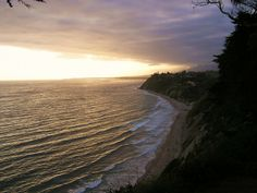 """""""The Douglas Preserve is a great place to relax and enjoy the simple beauty of Santa Barbara. This picture takes me back every time."""""""