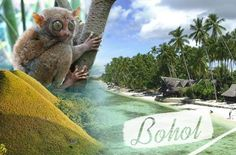 3-Days/2-Nights Bohol Adventure inclusive of Airfare, Transfers, Breakfasts & Tours for P5499 instead of P11000