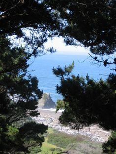 Irish Beach - Mendocino County, CA    my childhood