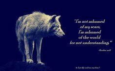 I'm Not Ashamed of My Scars, I'm Ashamed of the World For Not Understanding--Let the Wolves Run Free Photo
