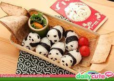 I want Sushi Pandas! So cute! I wonder if they can do Sushi Penguins? Panda Sushi, Panda Food, Fat Panda, Sushi Sushi, Cute Food, Good Food, Yummy Food, Tasty, Kawaii Bento