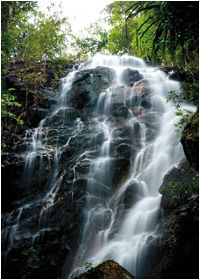 Phaeng Waterfall National Park - Koh Phangan