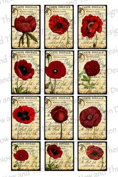 Digital Collage Sheet Printable Vintage Poppies by PicsandPaper //  Found on etsy.com Digital Collage Sheet Printable Vintage Poppies and Peonies (1x1.5) 4x6 INSTANT…