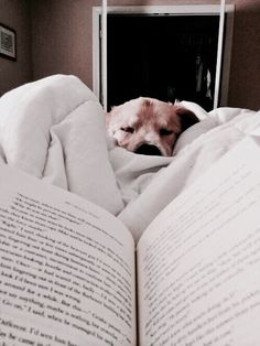 Warm and Cozy | Pinterest: mary*