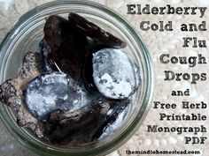 Elderberry Cough Drops and a Free Printable Herb Monograph PDF