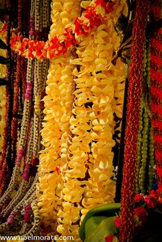 Gorgeous modern lei by talented photographer Noel Morata