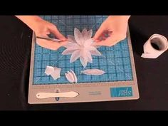 Heartfelt Creations Perfect Petal Collection - YouTube