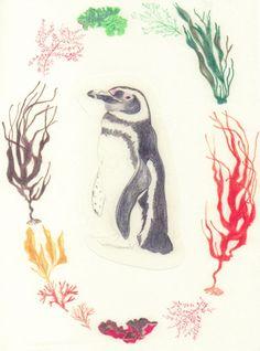 Corona Marina con pingüino 2