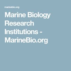 Keep Calm And Be A Marine Biologist  Marine Bio