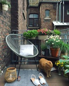 design small balcony in the big city chair metal green plants - carp .- kleinen Balkon gestalten in der Großstadt Stuhl Metall grüne Pflanzen – Teppic… design a small balcony in the big city chair metal … - Tiny Balcony, Porch And Balcony, Small Terrace, Balcony Plants, Balcony Garden, Balcony Ideas, Small Balconies, Terrace Ideas, Balcony Railing