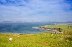 Les plaines verdoyantes du Kerry...   #kerry #ireland #irlande #alainntours Reine Victoria, Photo Souvenir, Ireland, Golf Courses, Tours, Mountains, Book, Nature, Pictures