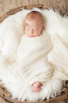 Danielle Greco Photography - New Jersey Newborn Photographer