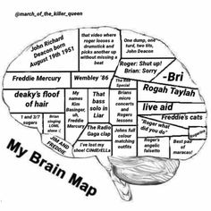 My brain map except Roger Taylor section is much bigger Queen Photos, Queen Pictures, Queen Freddie Mercury, Queen Band, Save The Queen, I Am A Queen, Bryan May, Freedy Mercury, Freddie Mecury