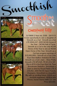 #Smoothish for sale