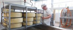 Barrys Bay Cheese-traditonal cheese making since Open for sales 7 days all year. Akaroa New Zealand, Cheese Shop, How To Make Cheese, Things To Do, Banks, Scenery, Things To Make, Landscape, Paisajes