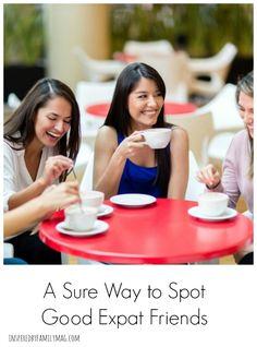 expat-friendships.jpg (556×750)