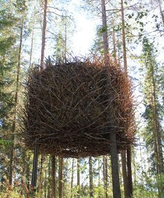 This huge nest with a retractable staircase forms part of a hotel in the trees in northern Sweden.
