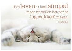 Ansichtkaart 'Het leven is heel simpel maar we willen het per se ingewikkeld maken' van Confucius.