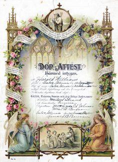 1915 Birth Certificate
