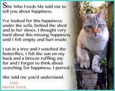 cat wisdom quotes - Google Search