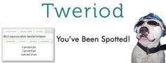 Tweriod, You've Been Spotted!  Tweriod Tells You the Best Times to Tweet