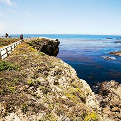 "Some will question artist Francis McComas's proclamation that Point Lobos is ""the greatest meeting of land and water in the world."" But not after doing a grand-tour hike along Point Lobos State Natural Reserve's shoreline trails."