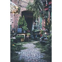 (2) Rue de Jacobs Paris florist. | Doors Windows Balconies | Pinterest ❤ liked on Polyvore featuring home, home decor, paris france home decor, parisian home decor and paris home decor