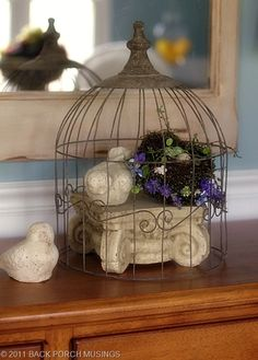 wire cage with shabby bird