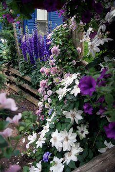 ...a short walk through the gardens... | Conrad Art Glass & Gardens