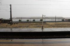 Victoria con lluvia. Febrero 2014.