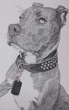 """""""Gunner"""", dotwork portrait, 2014 on Behance Dotted Drawings, Pencil Art Drawings, Animal Drawings, Art Sketches, Kunst Inspo, Art Inspo, Stippling Drawing, Black And White Art Drawing, Hyper Realistic Paintings"""