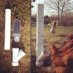 DIY chicken feeder from PVC pipes @Krystle Park Park Park Pleitz Hickam @Lynn Hickam