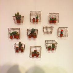 Geef je muur een stoere, natuurlijke look met deze fantastische mandjes en cactussen!