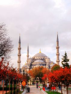 Blue Mosque, Istanbul by Jimmy Chan on 500px