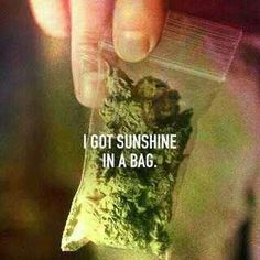 God Damn right sunshine in a bag! Smoke 'em if you got 'em! #HippyLife #WonkaVision #DreamTheDreams