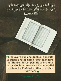 #Corano #Islam #Allah #Lord #God #Quotas