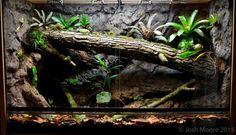 Josh Moore's new 450 gallon, planted Reptile House, Reptile Habitat, Reptile Room, Reptile Cage, Tarantula Habitat, Leopard Gecko Terrarium, Snake Terrarium, Snake Enclosure, Tarantula Enclosure