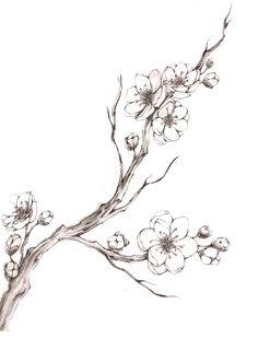 """Résultat de recherche d'images pour """"cherry blossom drawing"""""""