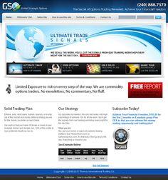 Global Strategic Options Custom CMS website Designed and Developed.
