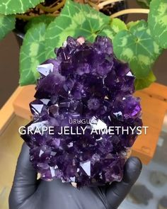 Authentic Uruguayan Grape Jelly Amethyst Clusters w/ Custom Cut Bases for Ascetic Display Available Now @ Northern Maine Minerals Rock Shop!