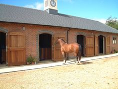 Lovely brick stables. So clean. Nice looking bay, too.
