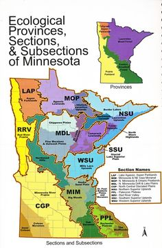 Ecological Map of Minnesota Feeling Minnesota, Minnesota Home, Minnesota Tourism, Mason City Iowa, White Bear Lake, To Infinity And Beyond, Cartography, Native Plants, Science And Nature