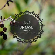 An Naml Surah graphics