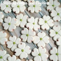 I'm so in love with how these dogwood cookies turned out! Thank you @whiskedawaycutters for the awesome cutter! #dogwood #cookies #flowers #lovebugcookies #decoratedcookies #loudouncounty #leesburg #hamilton #southriding #ashburn #loudouncountyactivity #loveloudoun #lovebugstudio