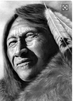 Tes American History Turtle Native Americans Indians The I Want You Your Life Voice