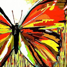The Red Butterfly:Saundramylesart